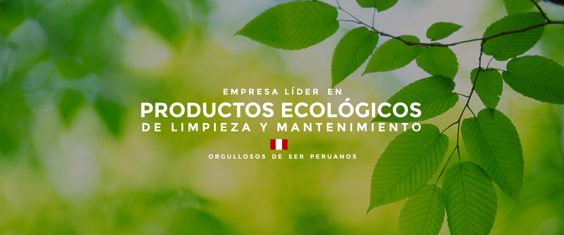 Qu 237 Mica Verde Productos Ecol 243 Gicos De Limpieza Y